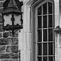 Princeton University Window And Lamp  by Susan Candelario