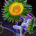 Psychedelic Sunflower by Paul W Faust - Impressions of Light