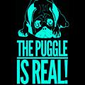 Puggle Is Real Funny Humor Pug Dog Lovers by Cameron Fulton