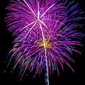 Purple Fireworks by Garry Gay