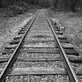 Railroad Tracks by Phil Perkins