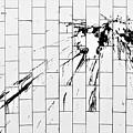 Subway Spatter by Rob Hans