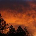 Sunrise by Cathy Harper