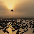 Sunrise by Uri Baruch