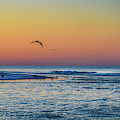 Sunrise With The Birds At Little Lagoon Pass by Michael Thomas