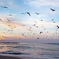 Sunset On The Beach by Hanna Tor