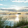 Sunset On The Elbe by Marina Usmanskaya