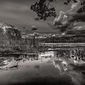 The Basin by Bob Orsillo