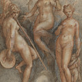 Three Goddesses  Minerva, Juno And Venus by Jan van der Straet