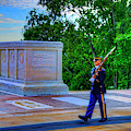 Tomb Of The Unknown Soldier Painting by Craig Fildes