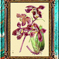 Vintage Orchid Antique Design Marble Caribbean-blue by Baptiste Posters