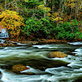 Waterfall Back Fork Of Elk by Thomas R Fletcher