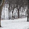 Winter Bridge by Edward Peterson