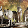 Wolf Pack by Jeannee Gannuch