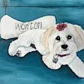 Wonton by Judy Swerlick