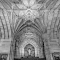 Yale University Library by Susan Candelario