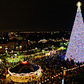100 Ft. Christmas Tree Delray Beach Florida by Lawrence S Richardson Jr