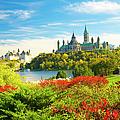 Parliament by Dennis Mccoleman