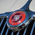1958 Jaguar by Tony Baca