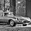1967 Jaguar E Type by Tim Gainey