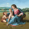 Alba Madonna  by Raphael