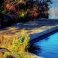 Autumn Colors In Kearney Lake by Ken Morris