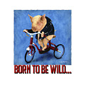 Born To Be Wild... by Will Bullas