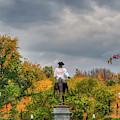 Boston Public Garden In Autumn by Joann Vitali