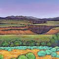 Desert Gorge by Johnathan Harris