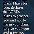 Jeremiah 29 11 - Inspirational Quotes Wall Art Collection by Mark Lawrence