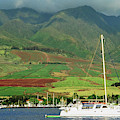 Maui Sunset Sail by Richard Jenkins