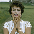 Portrait Of Sophia Loren by Loomis Dean