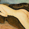 Reclining Nude From The Back by Amedeo Modigliani
