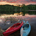 Summer Moments by Darylann Leonard Photography