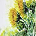 Sunflowers by Asha Sudhaker Shenoy