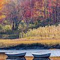 Two Boats In Autumn by Susan Cole Kelly