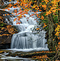 Waterfall And Fall Color by Thomas R Fletcher