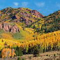 Autumn Leaves On Pikes Peak by Steve Krull