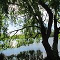 Lakes  by Joyce Woodhouse