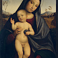 Madonna And Child  by Francesco Francia
