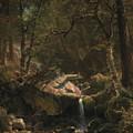 Mountain Brook by Albert Bierstadt