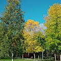 Park by Esko Lindell