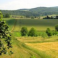 Photograph Of A Field In Germany by PM Artistic
