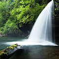 Waterfall In A Forest, Samuel H by Panoramic Images