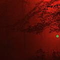 4-26-2009abcdefghijklmno by Walter Paul Bebirian