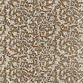 Decorative End Paper by English School