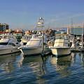 Palafox Pier by Anthony Dezenzio