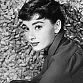 Portrait Of Audrey Hepburn by Hulton Archive