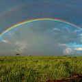 Rainbow by Mark Jackson