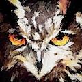 Eurasian Eagle Owl by Robert Kinser